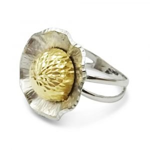14k Two-Colour Fancy Ring